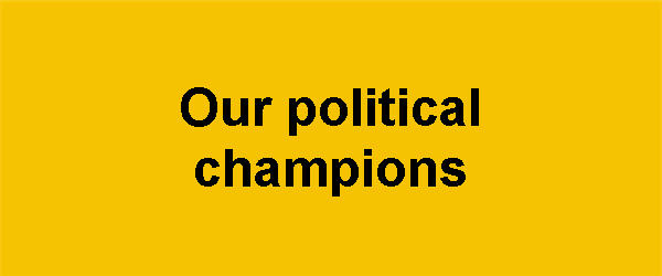 Political champions